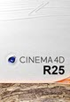 Maxon CINEMA 4D Studio R25.010 with Content Packs 64Bit